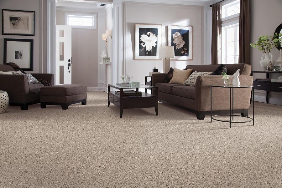 SmartStrand carpet flooring in a Maple Ridge, BC living room