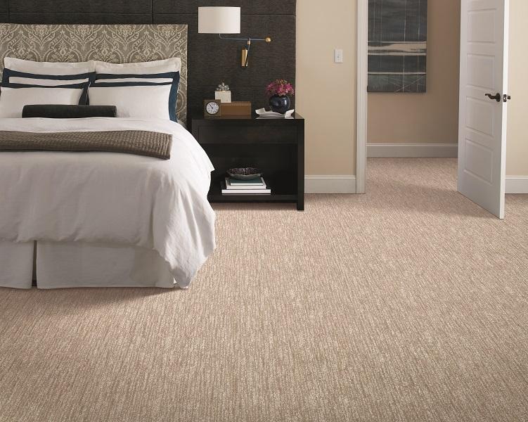 Berber carpet in a Maple Ridge, BC home