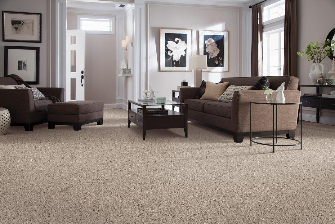 Carpet flooring in a Pitt Meadows, BC home