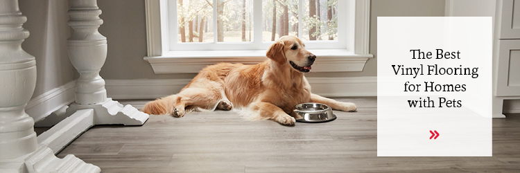 The Best Vinyl Flooring for Homes with Pets