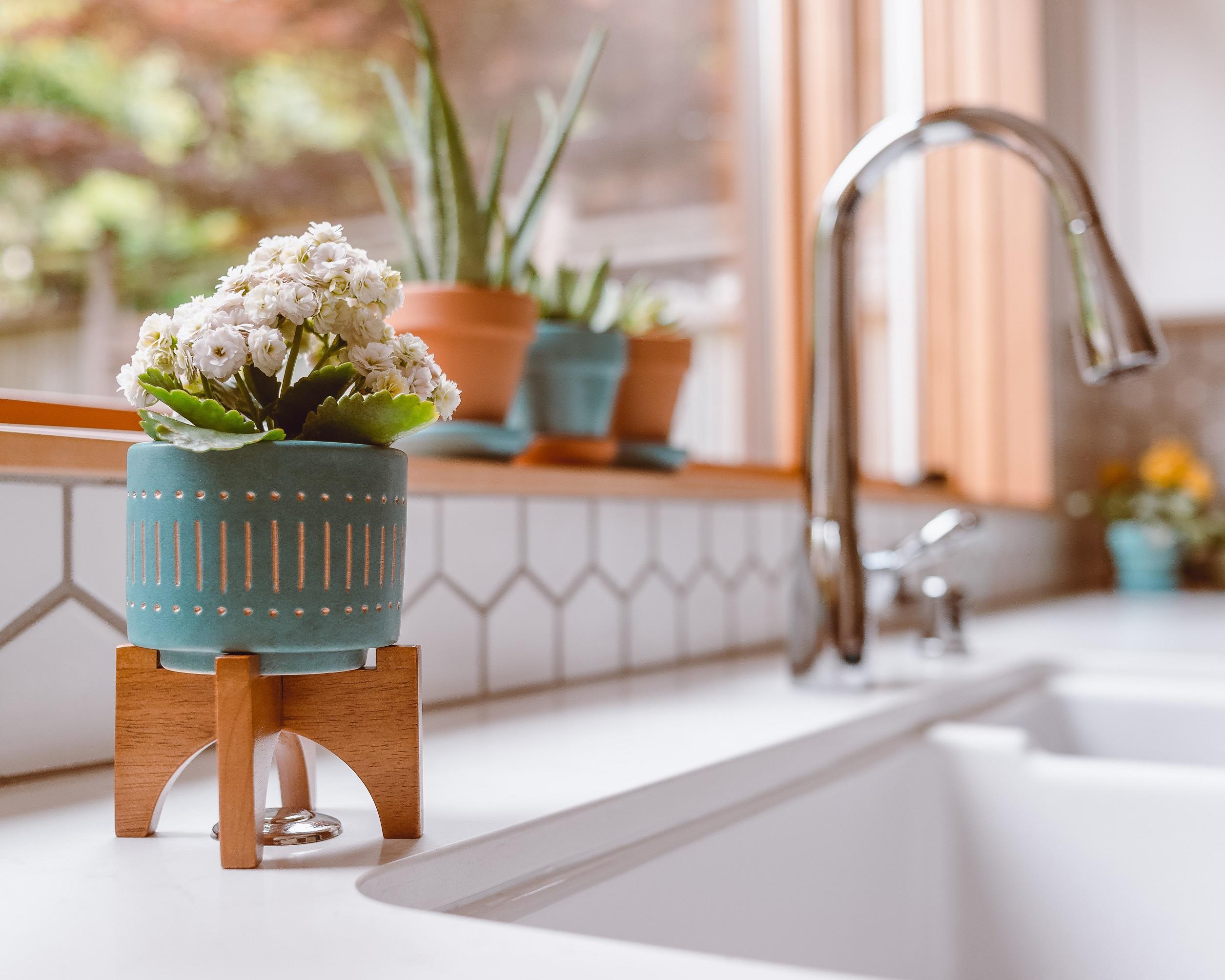 An image of a kitchen sink backsplash.