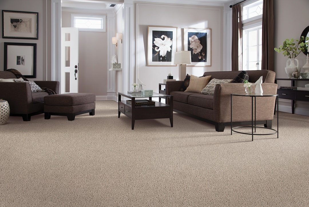 Carpet flooring in a Fort Myers, FL home