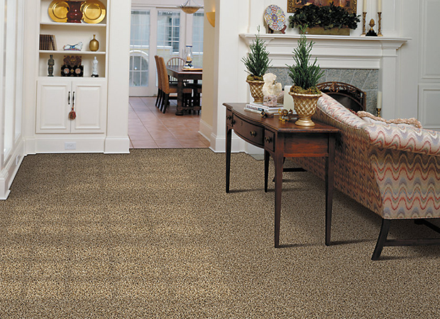 Soft carpet and smooth tile flooring in a St. Louis, MO home