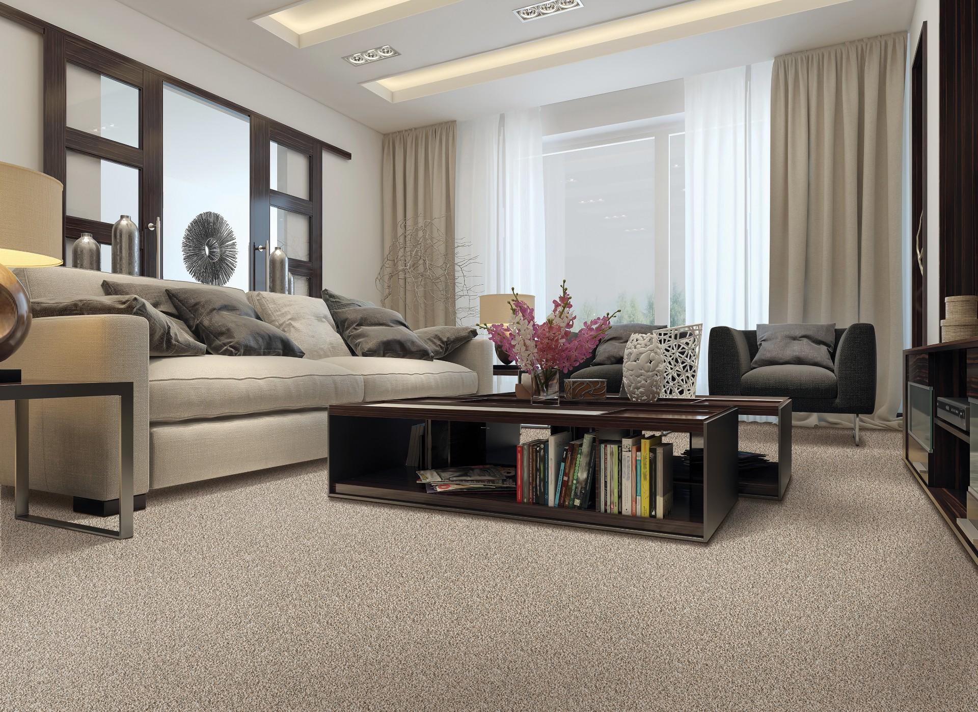 Beautiful SmartStrand carpet in an Omaha, NE living space