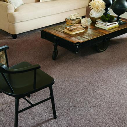 Carpet for living room from A E Howard Flooring near Lahoma OK