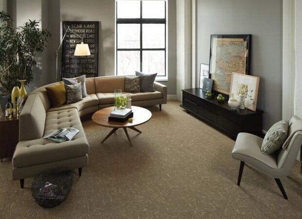 Carpet in  from DeSitter Flooring