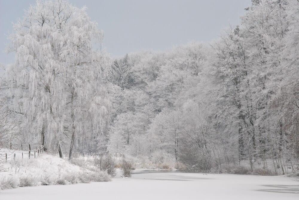 snow-1003774_1920