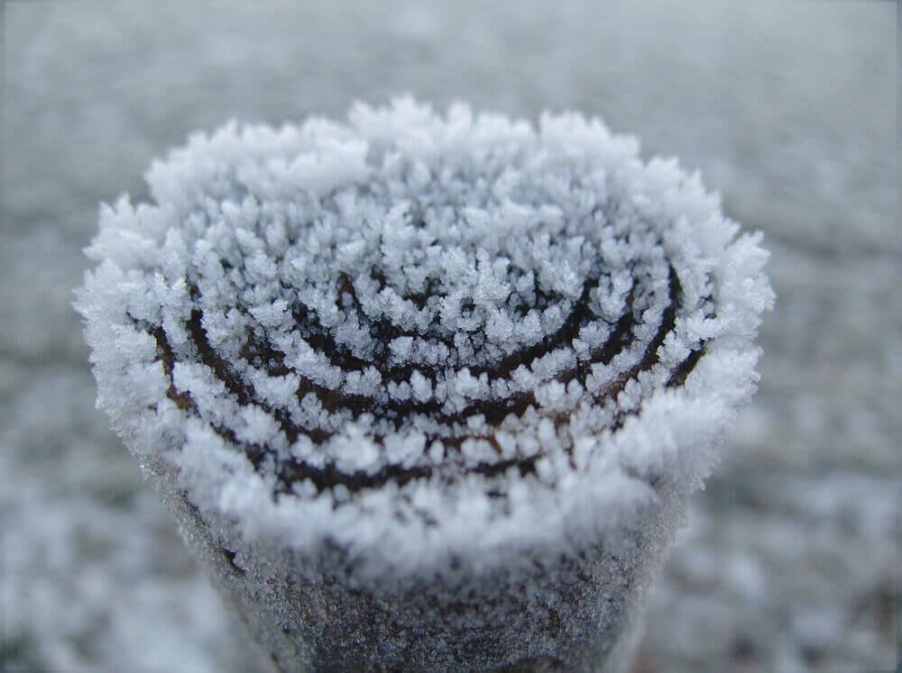 winter-235599_1920