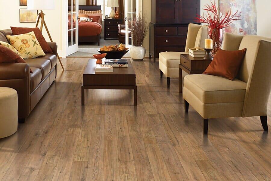 Laminate for living room near Pittsboro, NC at Bruce's Carpet