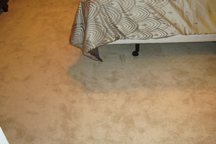 Carpeting in Leonardtown, MD from Southern Maryland Kitchen, Bath, Floors & Design