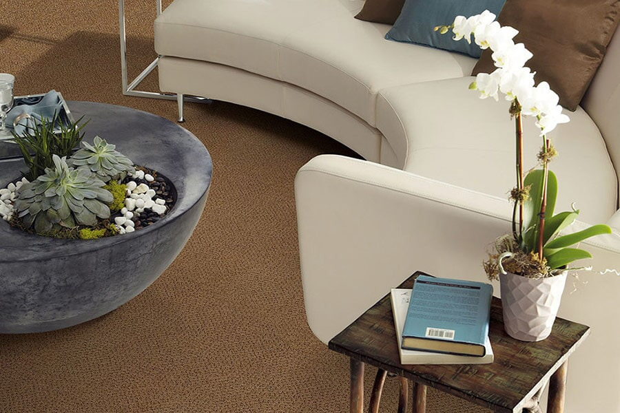 Beige Carpet near Norwich, CT at Eastern CT Flooring
