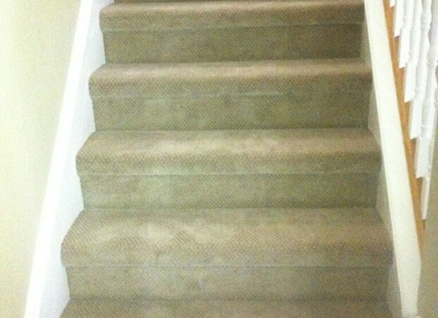 Carpeted stairs from The Flooring Center in Winter Park, FL