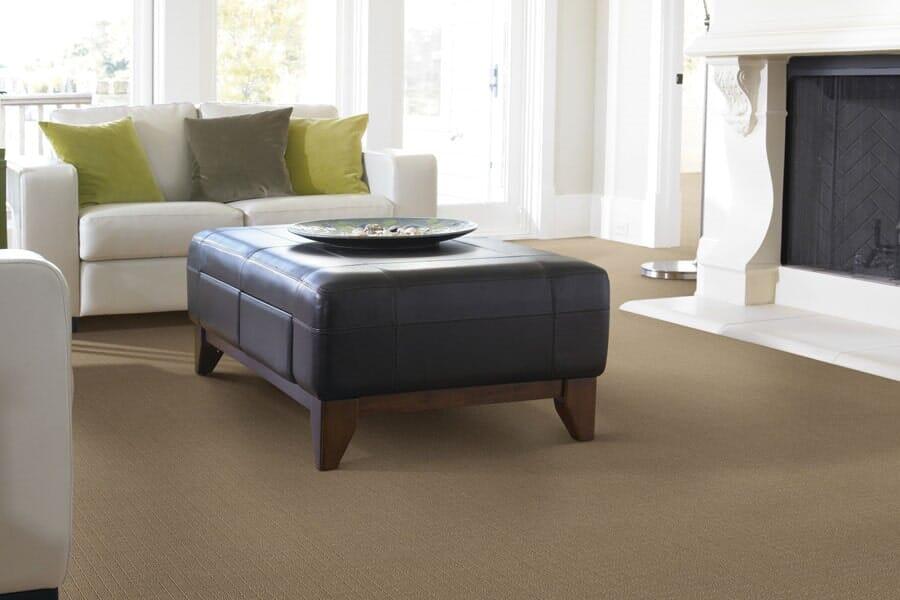 Carpet for living room near Billings, MT at Choice Floors