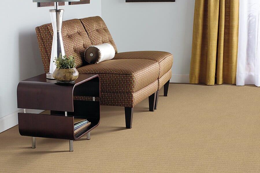 Carpet near South San Francisco, CA at Sean's Quality Floors