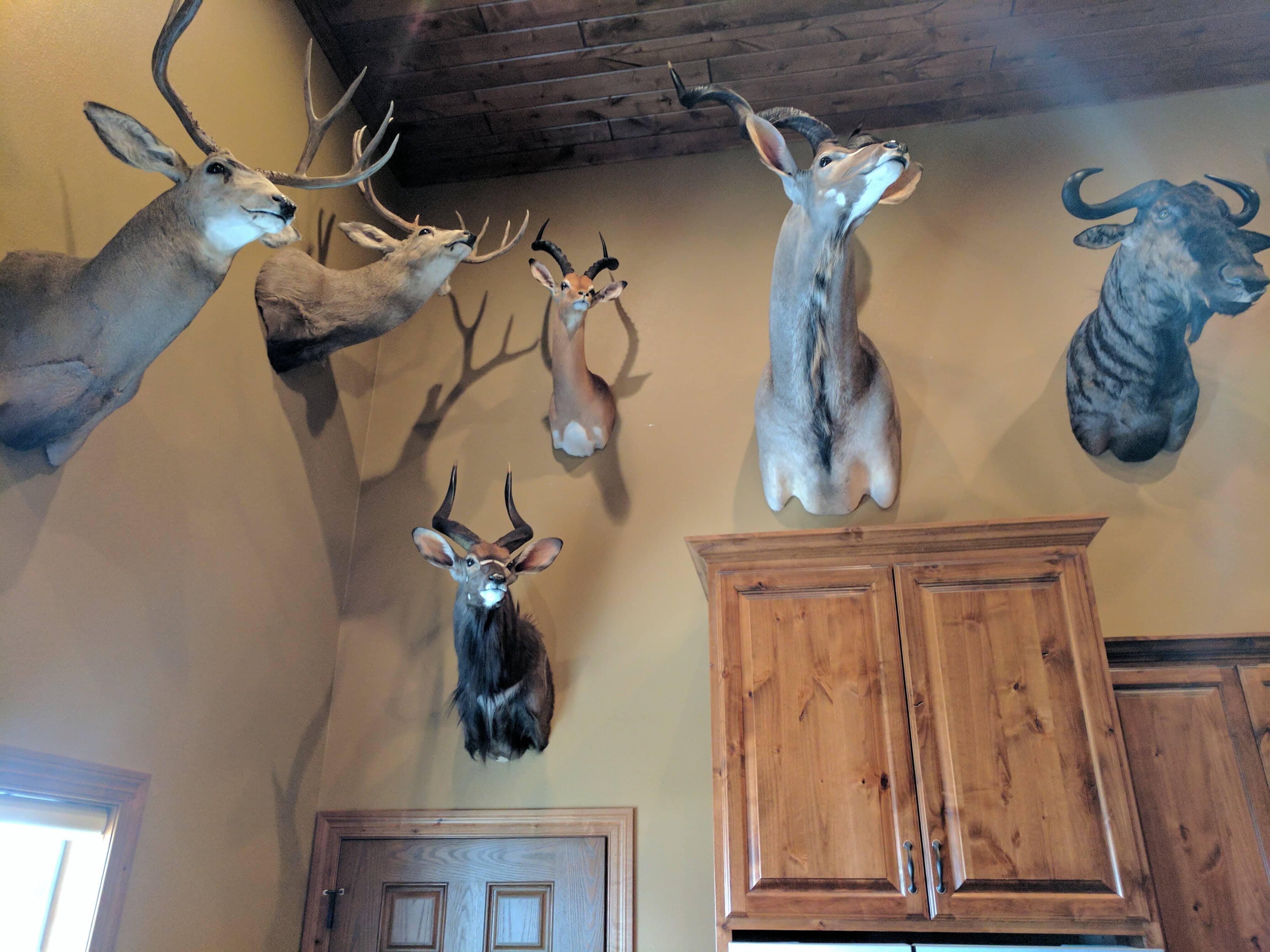 Man's Land Lodge Akaska South Dakota