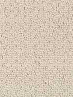 Carpet Flooring from AE Howard Flooring near Enid OK