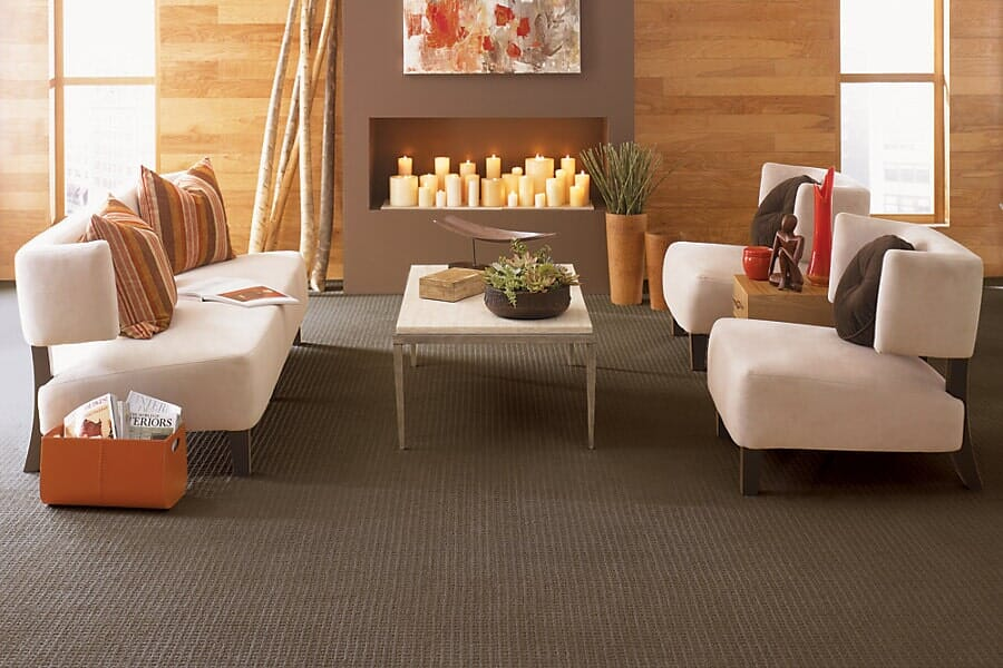 Carpet flooring for living room from Vern's Carpet near Fertile MN