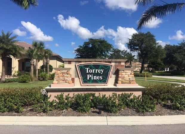 Torrey Pines near Sanibel FL