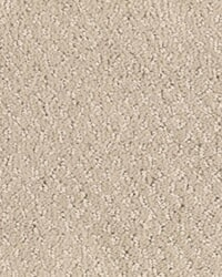 Shop for Carpet Flooring from West Bloomfield, MI from Michigan Carpet & Tile