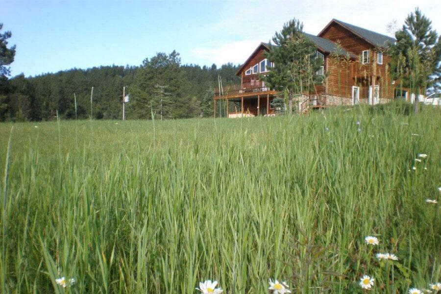 Last Minute Vacation, Mountain Stream Estates, Lead, South Dakota