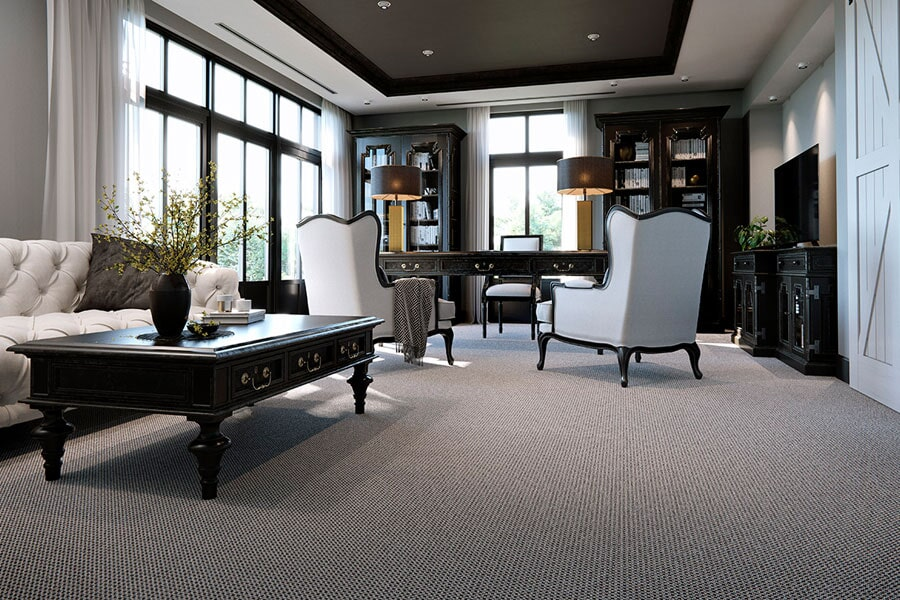 Textured Karastan carpet