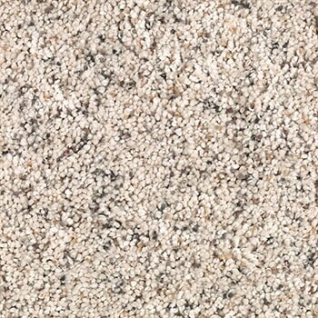 Shop for carpet in Quincy IL from Carpet & Rug Gallery