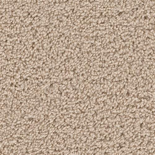Shop for carpet in Tacoma WA from Meyer Floor Covering