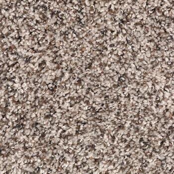 Shop for carpet in Roslyn Abington PA from Easton Flooring
