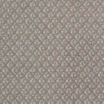 Shop for carpet in Rio Rancho NM from Carpet Source