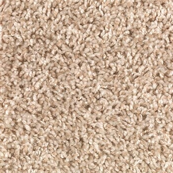 Shop for carpet in Douglas WY from Don's Mobile Carpet