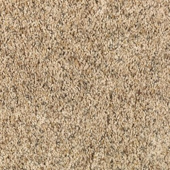Shop for carpet in North Port FL from Quality Carpet Outlet