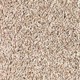 Shop for carpet in Tucson AZ from Apollo Flooring
