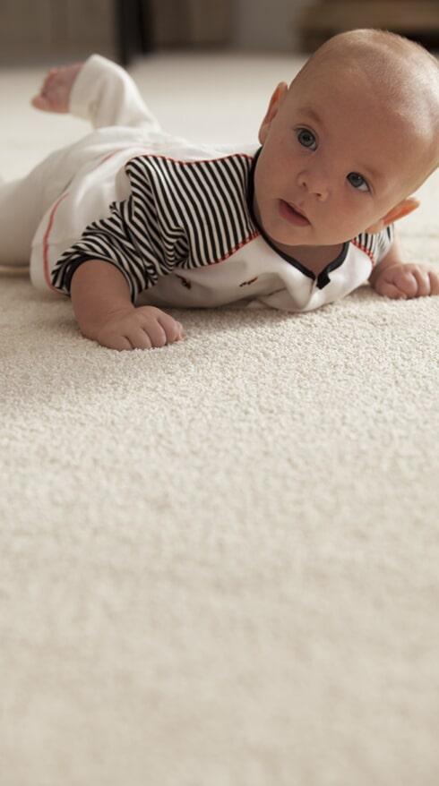 Family friendly carpet in Tucson AZ from Apollo Flooring