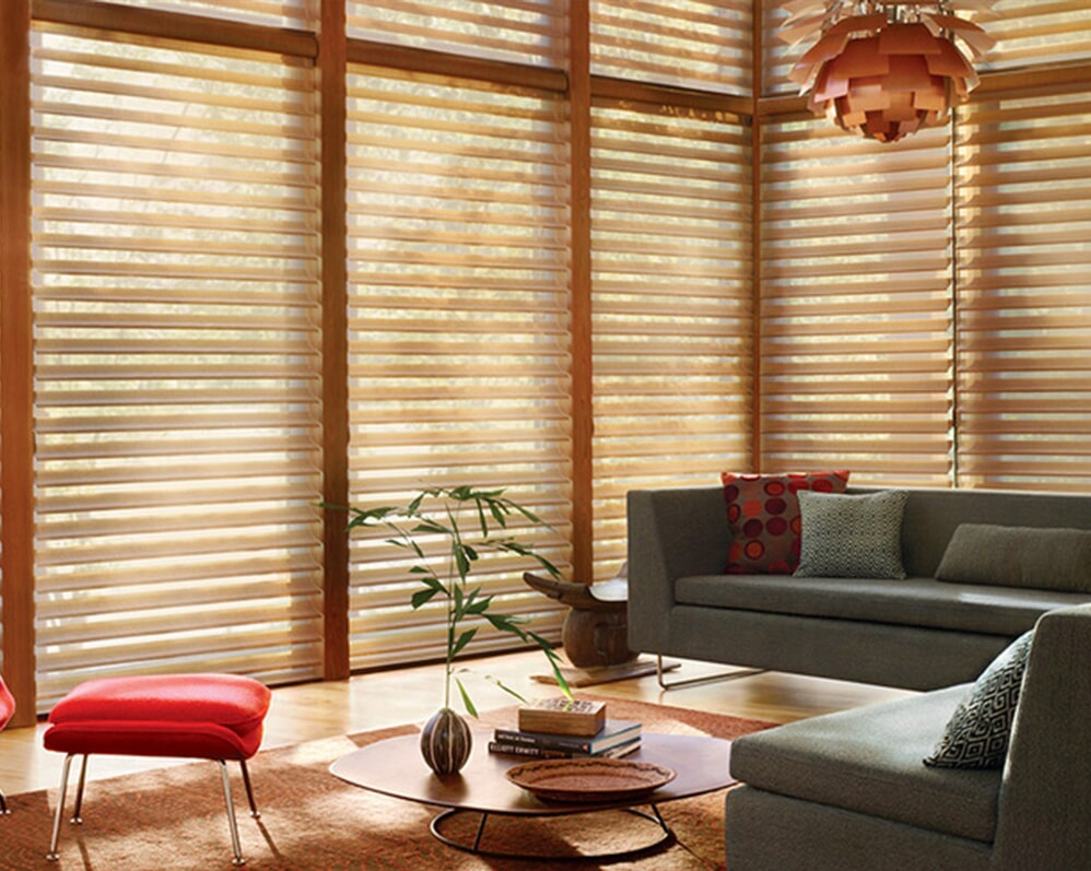 HUNTER DOUGLAS BLINDS - LIVING ROOM