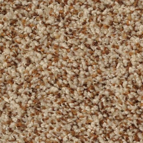 Shop for carpet in Soquel CA from Interior Vision Flooring & Design