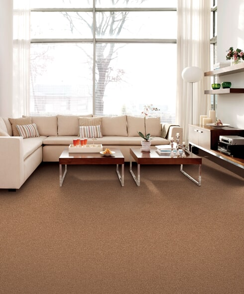 Maintaining carpet flooring in Lancaster CA from Metro Floors