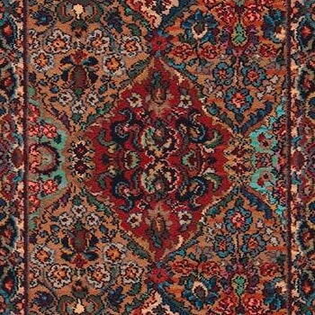 Shop for area rugs in St Joseph MI from Migala Rug & Tile