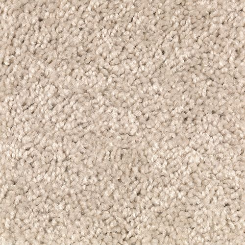 Shop carpet in The Villages FL from DCO Flooring