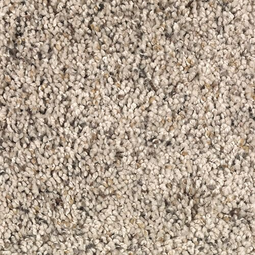 Shop Carpet in Anna IL from L & P Carpet