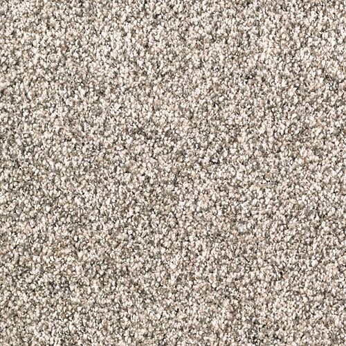 Shop Carpet in Knoxville TN from Johnson and Sons Flooring