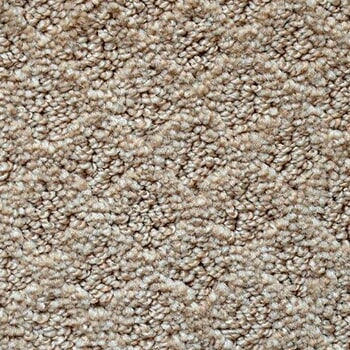 Shop Carpet in Windermere FL from All Floors of Orlando