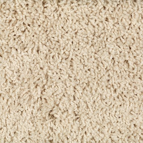 Shop Carpet in Calagry  AB from After Eight Interiors