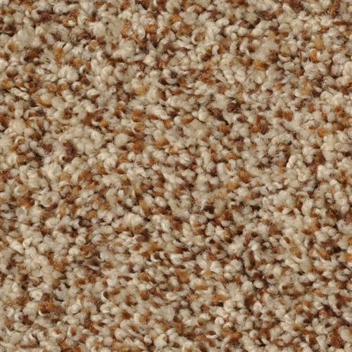 Shop Carpet in Sacramento CA from Marsh's Carpet