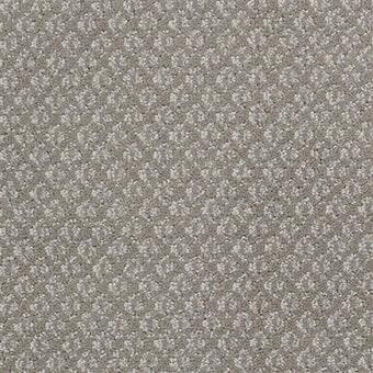 Shop for carpet in Destin,Shop for flooring in Destin from Coastal Carpet and Tile Carpet One Floor & Home