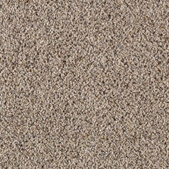 Shop for carpet in Norwood,  MA from Anselone Flooring