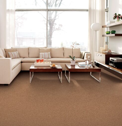 Luxury carpet in Fremont MI from Herb's Carpet & Tile