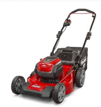 grants small motors lawnmower pic1
