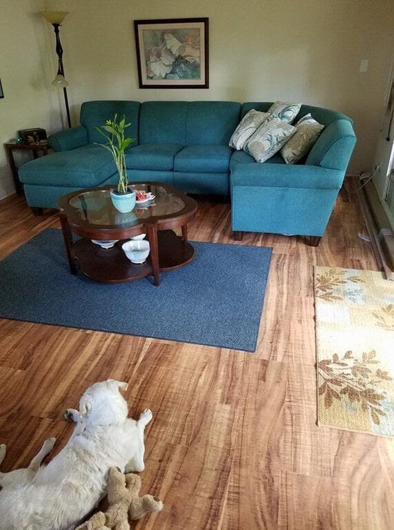 ivc_koa_living_room_blue_furniture
