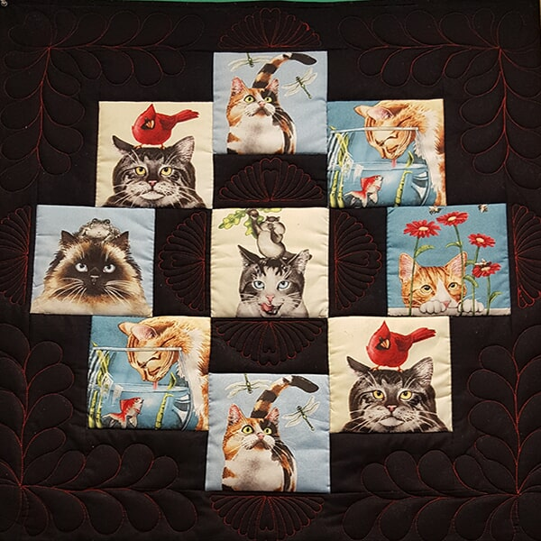 Quilt with cats, Sewing Etc., Yorkville, IL