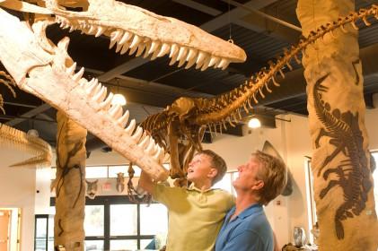 Tylosaur, The Dinosaur Store, Cocoa Beach, Florida